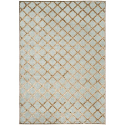 Goetz Aqua/Brown Area Rug Rug Size: Rectangle 76 X 106