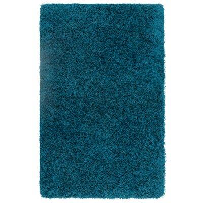 Nasim Teal Area Rug Rug Size: Rectangle 35 x 55