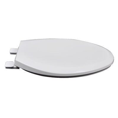 Slow Close Premium Plastic Elongated Toilet Seat Finish: Cotton White