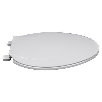 MRO Grade Plastic Elongated Toilet Seat Finish: White