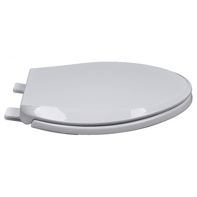 Heavy Duty Commercial Weight Slow Close Premium Plastic Elongated Toilet Seat Finish: White