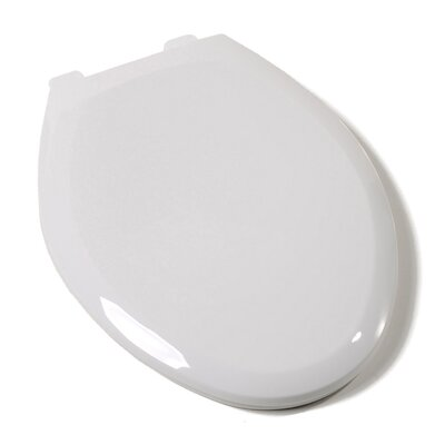 Slow Close Premium Plastic Elongated Toilet Seat Finish: White