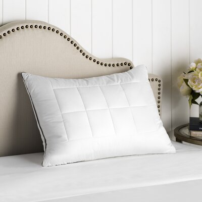 Feather and Down Alternative Compartment Pillow Size: Standard / Queen