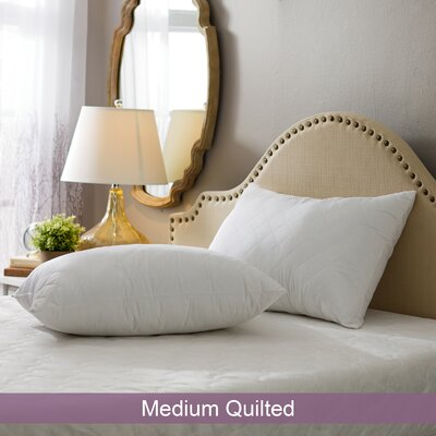 Wayfair Basics Medium Quilted Pillow Size: Standard