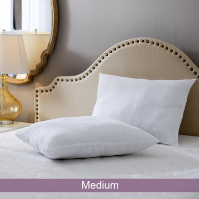 Wayfair Basics Medium Pillow Size: Standard