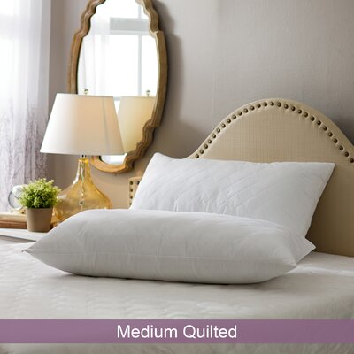 Wayfair Basics Medium Quilted Pillow Size: King