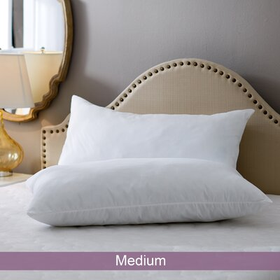 Wayfair Basics Medium Pillow Size: King