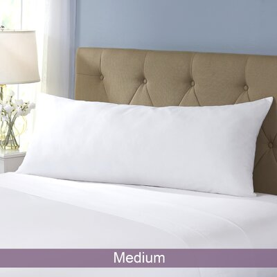 Wayfair Basics Body Pillow