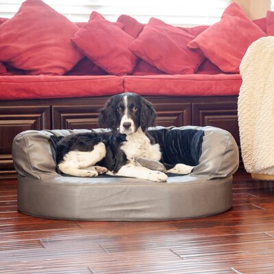 Luxury Orthopedic Memory Foam Leatherette Bolster Dog Bed Color: Charcoal / Licorice, Size: Medium (36 L x 26 W)