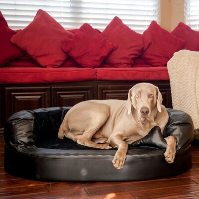Luxury Orthopedic Memory Foam Leatherette Bolster Dog Bed Color: Black / Licorice, Size: Large (46 L x 32 W)