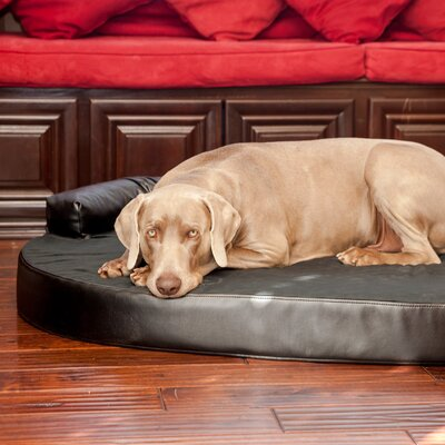Orthopedic Memory Foam Leatherette Joint Relief Bolster Dog Bed Color: Charcoal / Licorice, Size: Large (46 L x 32 W)