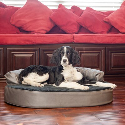 Orthopedic Memory Foam Leatherette Joint Relief Bolster Dog Bed Color: Black / Licorice, Size: Large (46 L x 32 W)