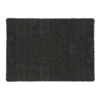 Cozy Charcoal Area Rug Rug Size: Rectangle 82 x 910