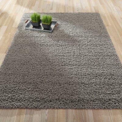 Cozy Gray Area Rug Rug Size: 82 x 910