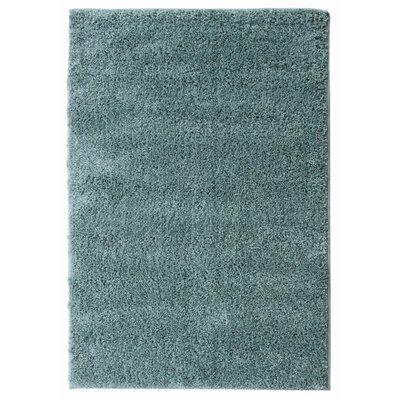 Teal Area Rug Rug Size: 67 x 93
