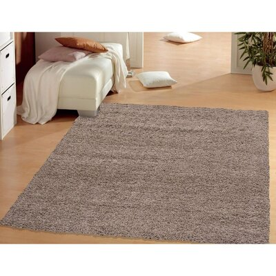 Cozy Shag Beige Runner Rug Size: Rectangle 5 x 7