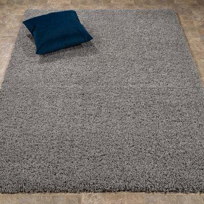 Gray Area Rug Rug Size: 33 x 47