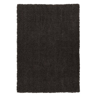 Cozy Shag Machine Woven Mat Color: Charcoal Grey