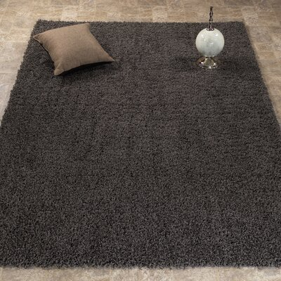 Cozy Charcoal Gray Area Rug Rug Size: 33 x 5