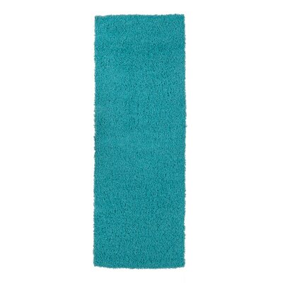 Cozy Turquoise Area Rug Rug Size: Rectangle 20 x 411