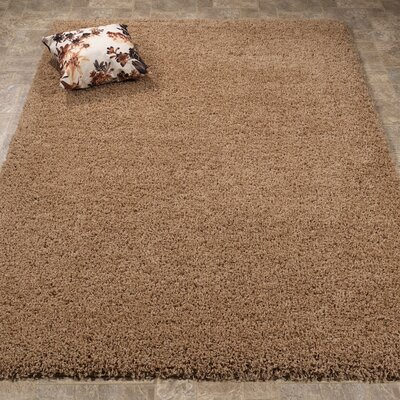 Cozy Shag Beige Runner Rug Size: Rectangle 33 x 47