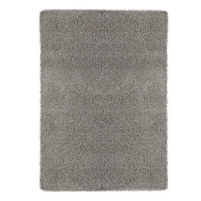 Cozy Gray Area Rug Rug Size: Rectangle 33 x 5