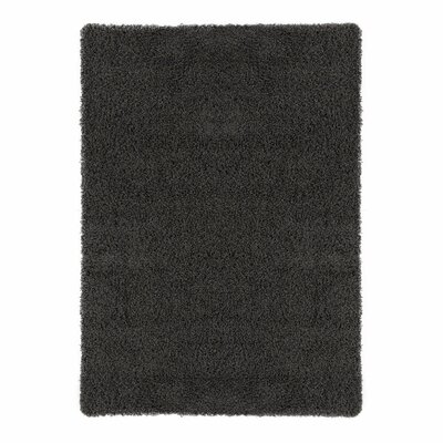 Cozy Charcoal Area Rug Rug Size: Rectangle 33 x 5