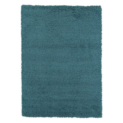 Cozy Turquoise Area Rug Rug Size: Rectangle 710 x 910