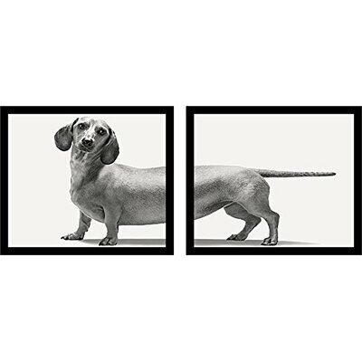 'Set Heads and Tails (Dachshund)' by Framed Graphic Art Print Multi-Piece Image Poster