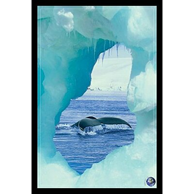 'Whale Tail - Iceberg - Save Our Planet' Framed Graphic Art Print