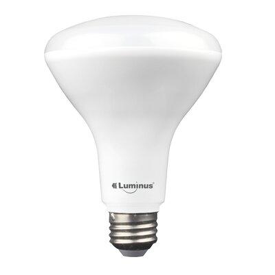 BR30/Medium LED Light Bulb Pack of 4