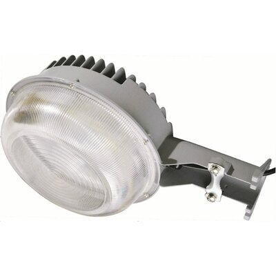 Flood/Security Light