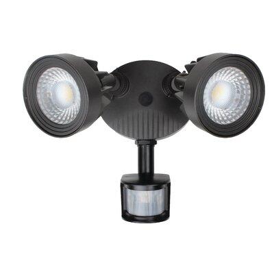 Flood/Security Light