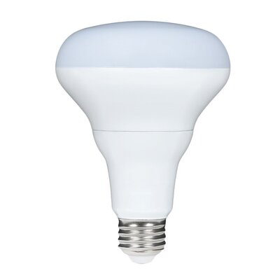 9W BR30 LED Light Bulb
