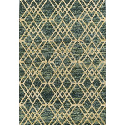 Brayden Teal Area Rug Rug Size: 710 x 112