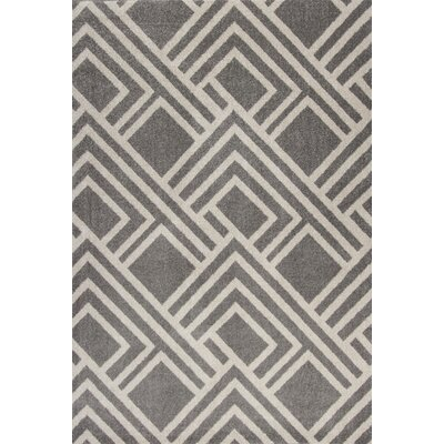 Lowesdale Gray Indoor/Outdoor Area Rug Rug Size: 53 x 77