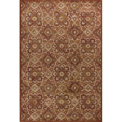Holder Rust Area Rug Rug Size: 53 x 77