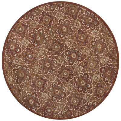 Holder Rust Area Rug Rug Size: Round 77