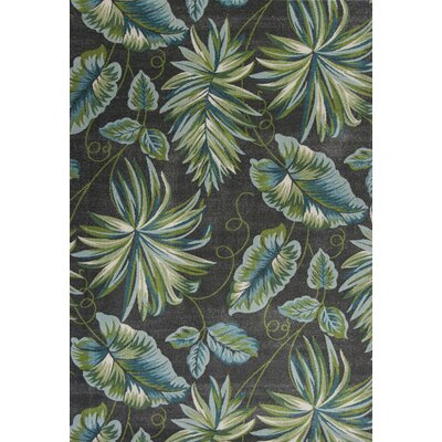 Alessa Gray/Green Area Rug Rug Size: 53 x 77