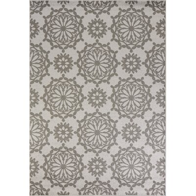 Novello Flora Gray Area Rug Rug Size: Rectangle 53 x 77