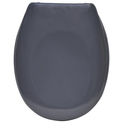 Slow-Close Quiet Elongated Toilet Seat Color: Gray