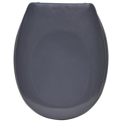 Slow-Close Quiet Elongated Toilet Seat Color: Gray