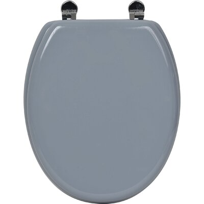 Pinky Elongated Toilet Seat Finish: Blue Gray