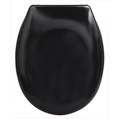 Slow-Close Quiet Oval Toilet Seat Finish: Black