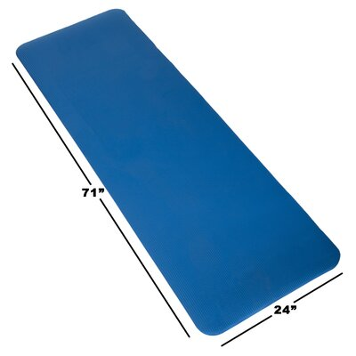 Non-Slip Foam Camping Sleep Mat Color: Blue