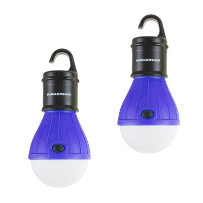 Portable LED Light Bulb