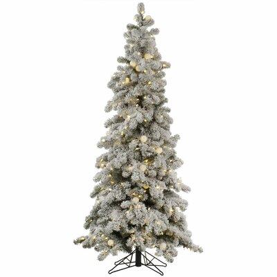 Flocked Kodiak 4' White Spruce Artificial Christmas Tree with 175 LED White Lights HLDY2238 32357884
