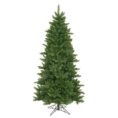 Camdon Fir 6.5' Green Artificial Christmas Tree with Unlit with Stand HLDY2251 32357897