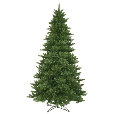 Camdon Fir 9.5' Green Artificial Christmas Tree with Unlit with Stand HLDY2273 32357919