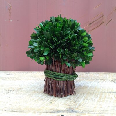 Garden Boxwood Bouquet Topiary (Set of 2)